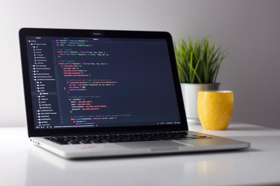 Continutul – elemente de baza in web development